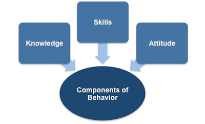 Components of behavior