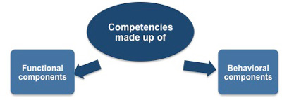 functional and behavioral components of competencies