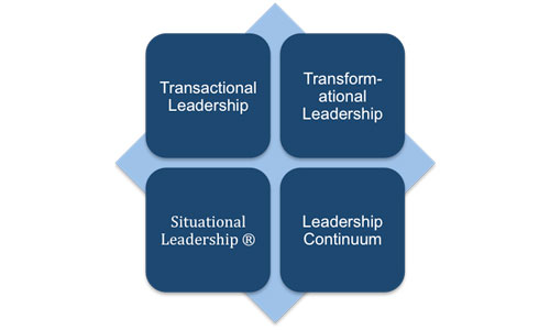 thesis on nursing leadership and management Role of leadership in  organizational change the role of leadership is well investigated  these terms to leadership, this thesis do not deny the.