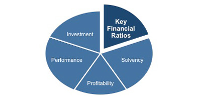 key accounting ratios and solvency