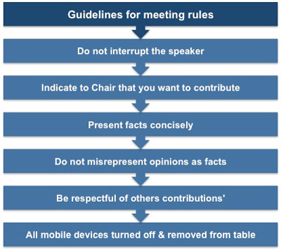 Guidelines for meeting rules