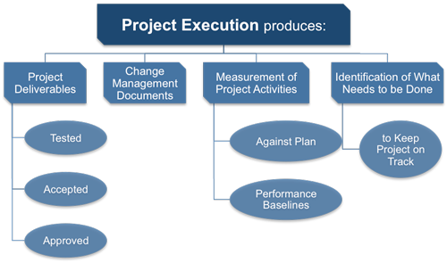 Project Executing Processes
