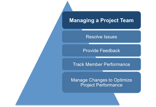 manage project team