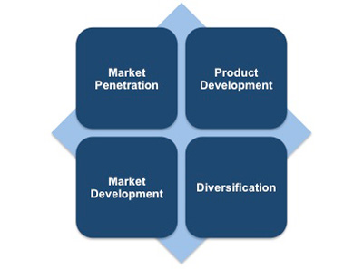Ansoff strategy for diversification