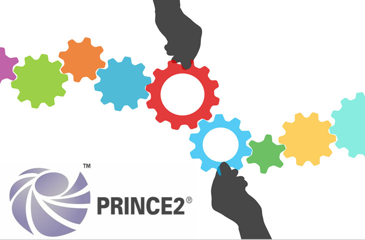 Download prince2 for dummies ebook
