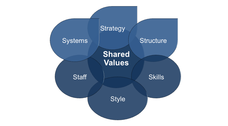 The McKinsey 7S Model