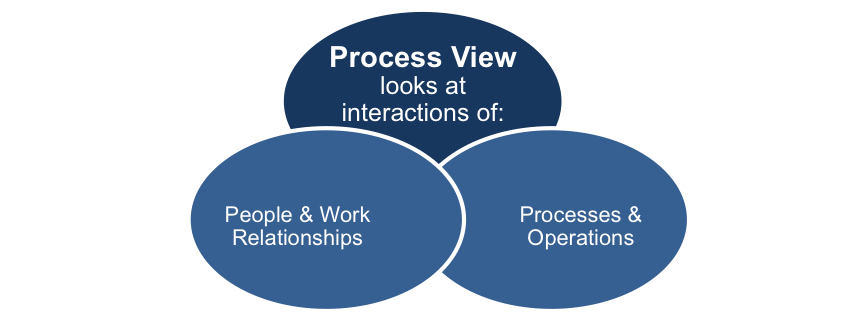 The Process View