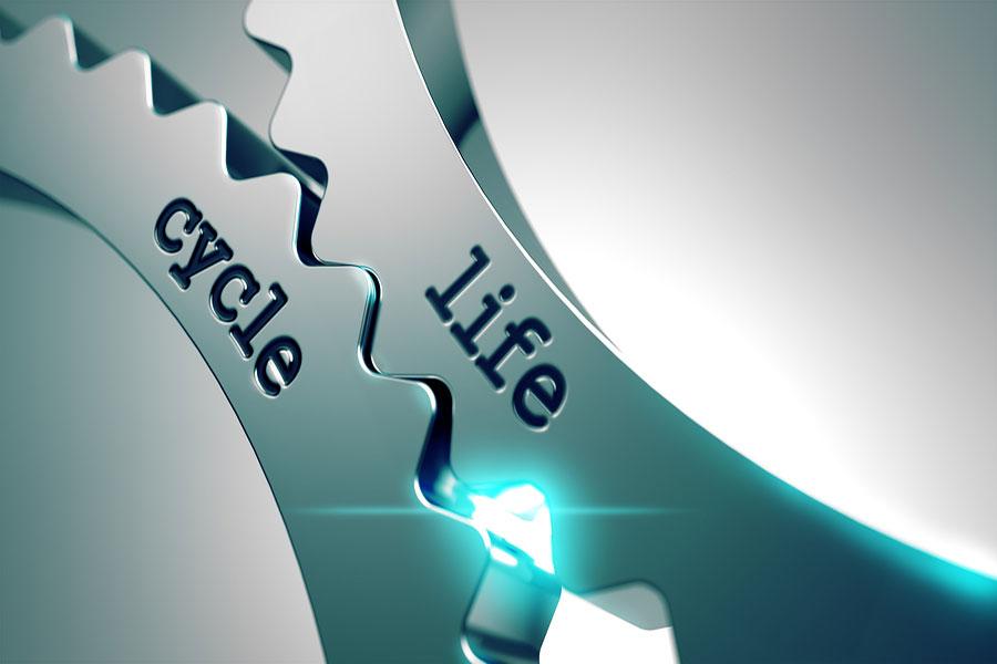 Adizes' Corporate Lifecycle