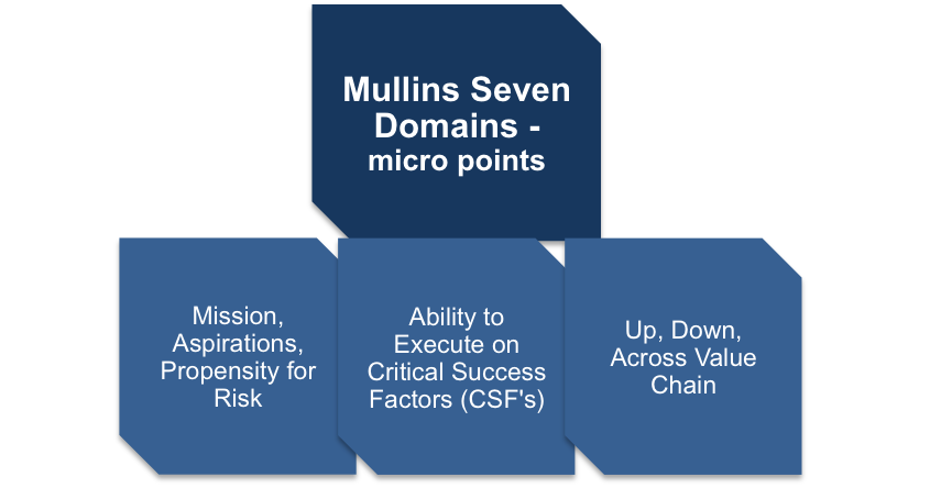 Micro Points of Mullins Seven Domains