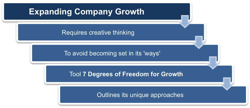 McKinsey's Seven Degrees of Freedom for Growth