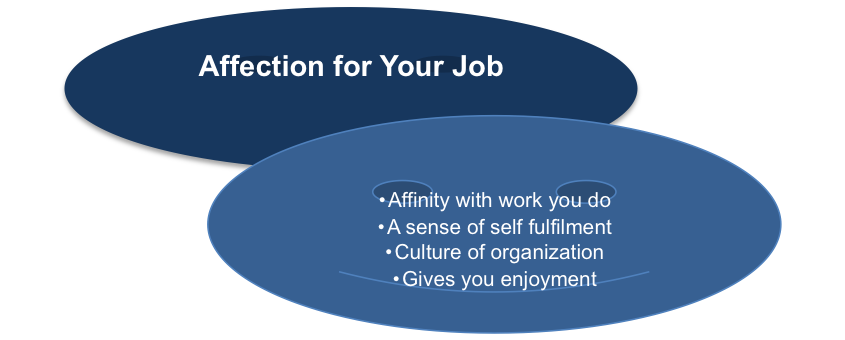 Affection for Your Job