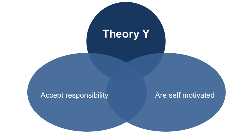 Theory Y Management