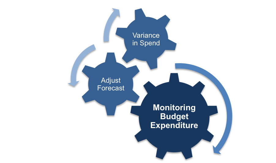 Budget Monitoring Process
